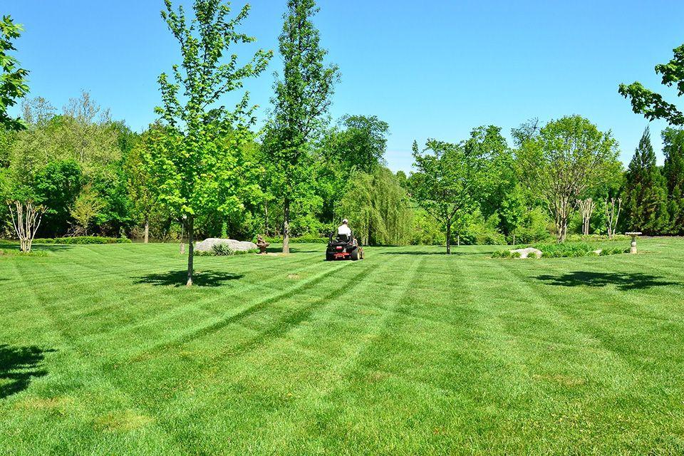 SM lawn-care-643557_1920